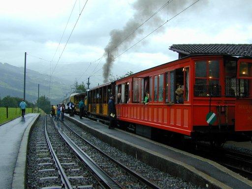 Rigi-Dampf-Festival trotzte dem Nebel